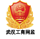 Wuhan Network Supervision Electronic Logo