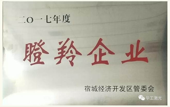 """江苏华工激光喜提""""瞪羚企业""""称号"""