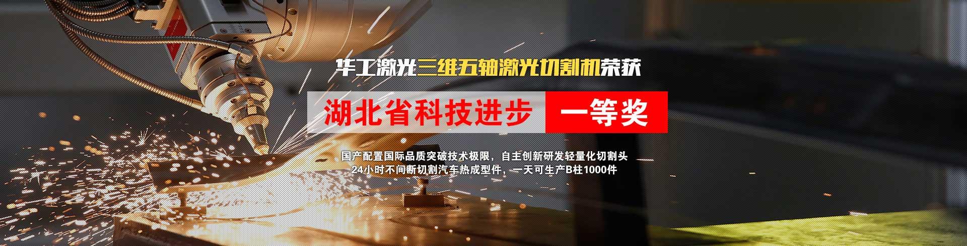 湖北省科技进步一等奖